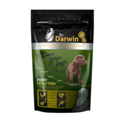 d-rdarwin-puppy-evolution