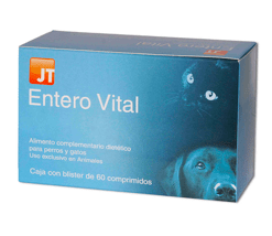 diarreas en perros y gatos jt enterovital